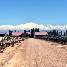 Winery in Mendoza, Argentina